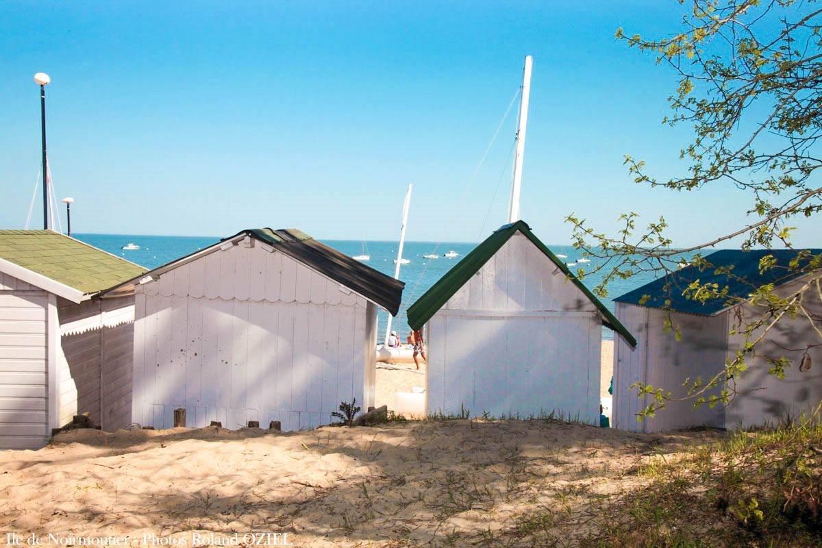 Les u00eeles vendéennes, Noirmoutier et l' u00eele d'Yeu proche du camping # Le Bois De La Chaize