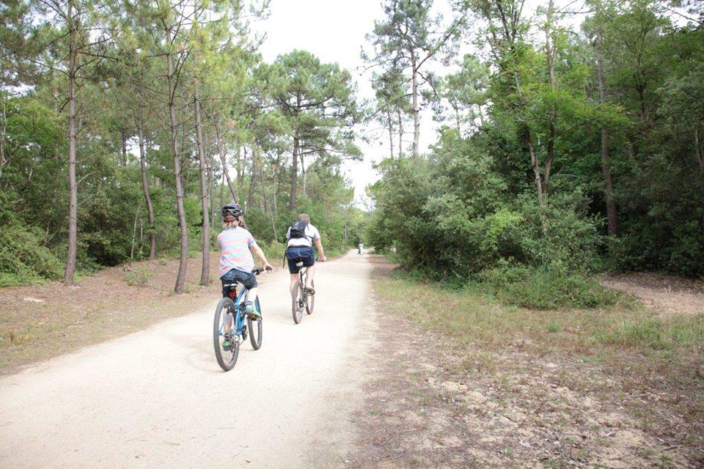 Cyclistes au cœur de la foret