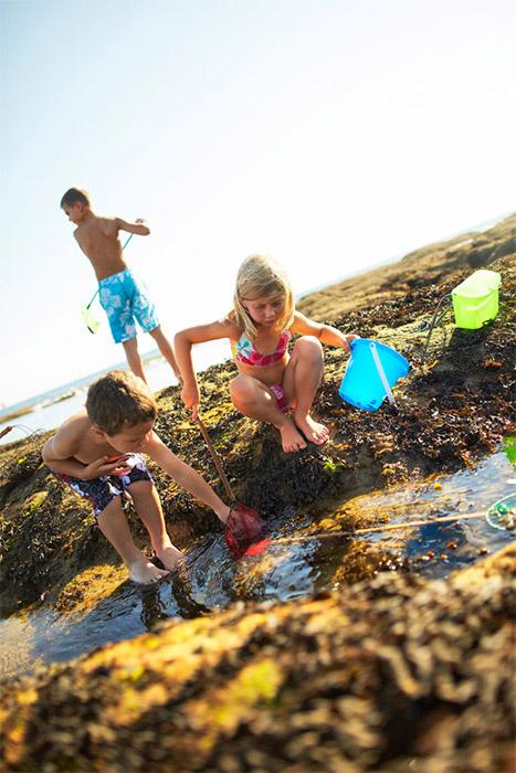 camping avec animation plage pêche en Vendée