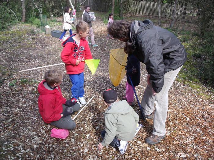 camping avec animations en forêt avec les enfants et ados