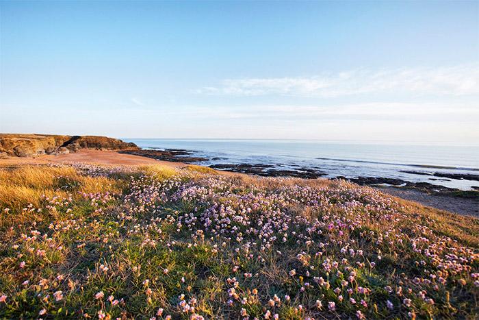 vacances camping 3 étoiles à taille humaine sur le littoral Atlantique